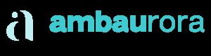En bild som visar Ambaurora Communications logotyp i sidfoten.